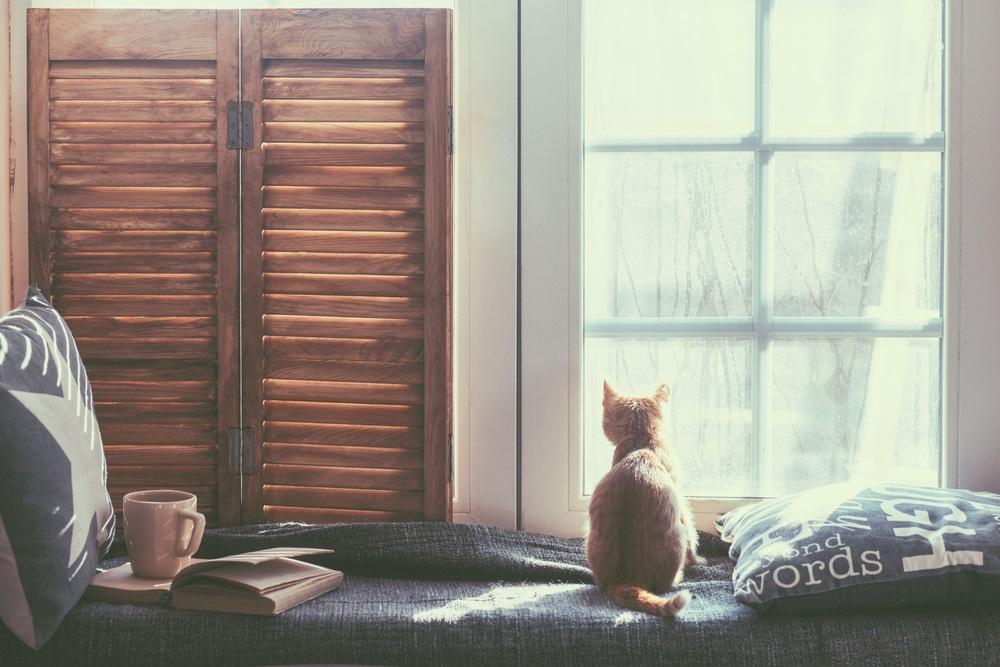 Huis check up winter