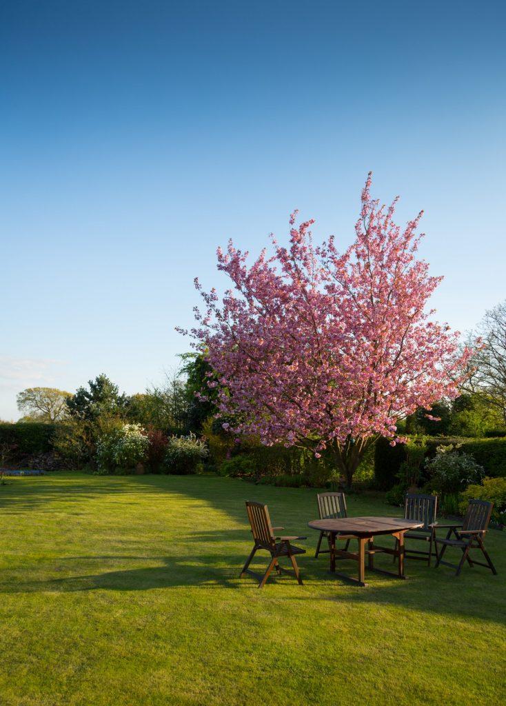 tuin klaar voor het voorjaar
