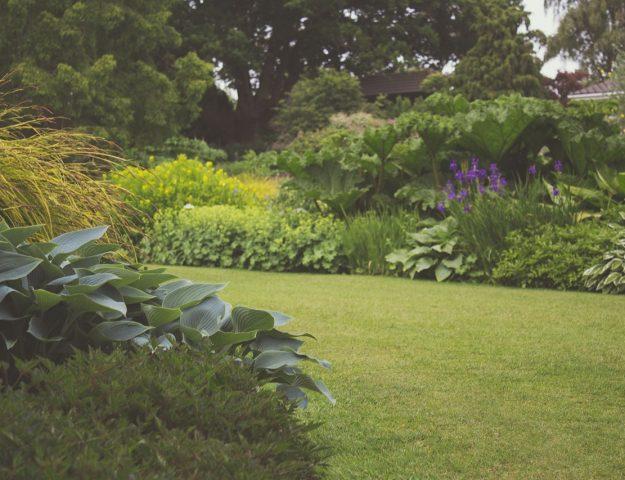 tuin klaar voor het voorjaar2