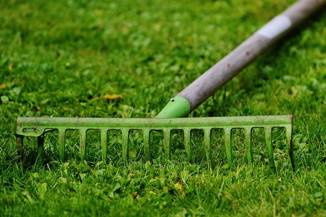 Je_grasveld_mooi_maken