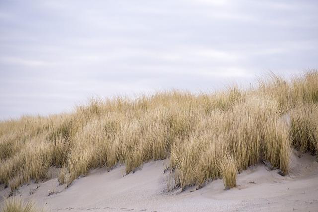 Heerlijk strand bij Kijkduin