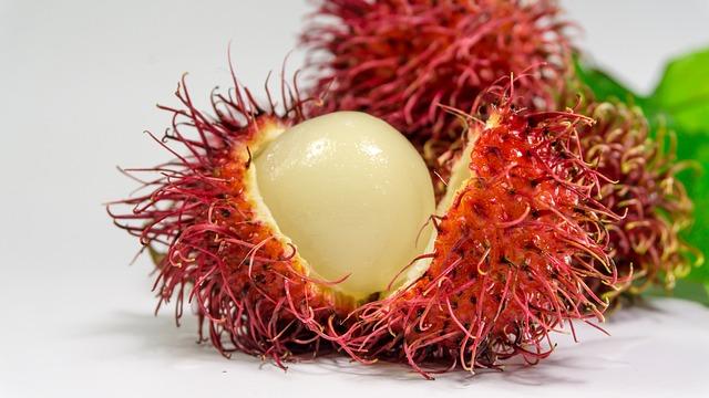 Onbekend fruit